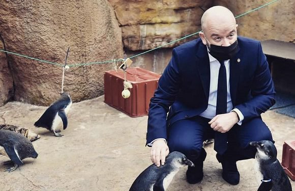 Мер Вроцлава Яцек Сутрик заохочує відвідати зоопарк [+ВІДЕО]