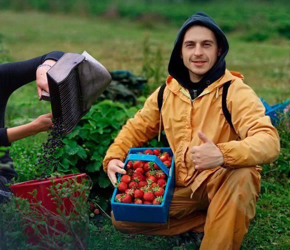 Фінляндія заборонила приїзд українських заробітчан до 18 вересня