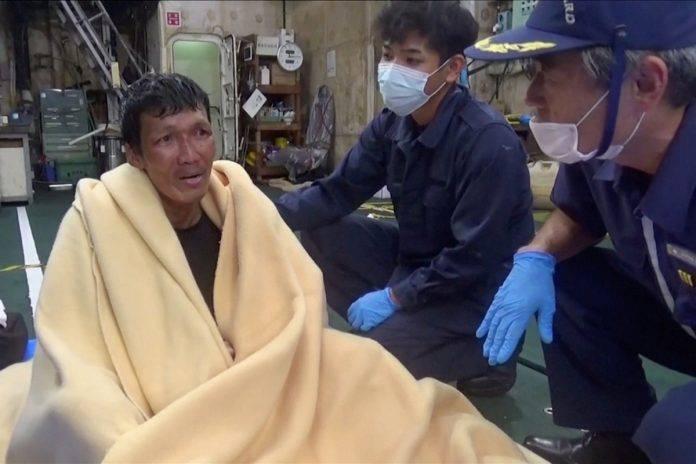 Біля Японії затонув сухогруз, з 43 моряками та 5800 коровами [+ФОТО]