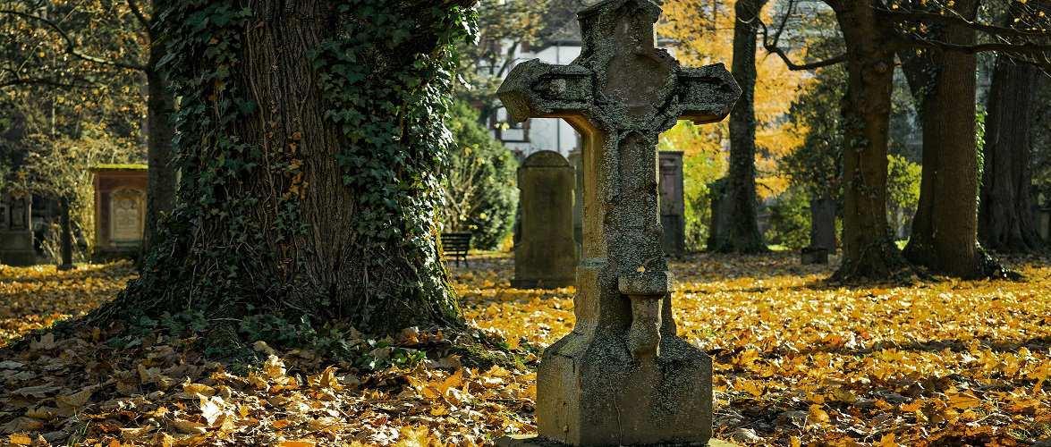 В Польщі ізоляційний центр для пацієнтів Covid-19 облаштували… на кладовищі
