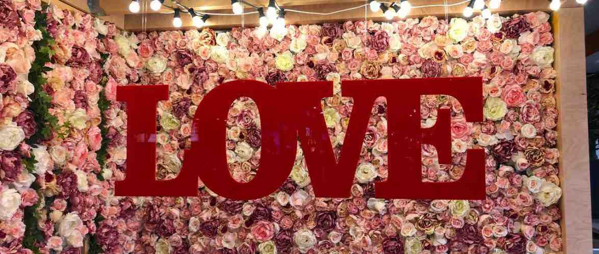 Як у Вроцлаві святкуватимуть День Закоханих?