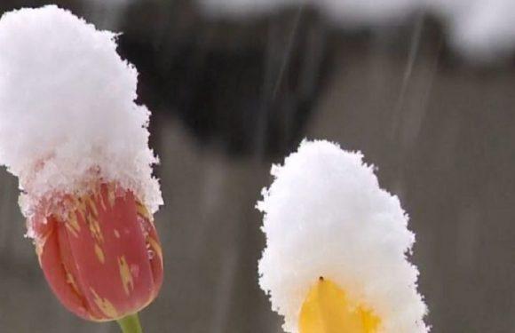 У Польщі може випасти до 15 см снігу