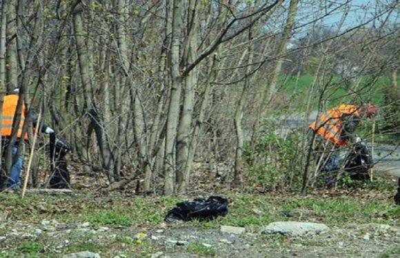 У Польщі безробітні прибирають місто від сміття