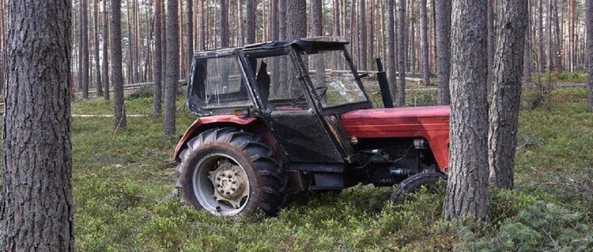 Трагедія в лісі: в Польщі трактор переїхав чоловіка