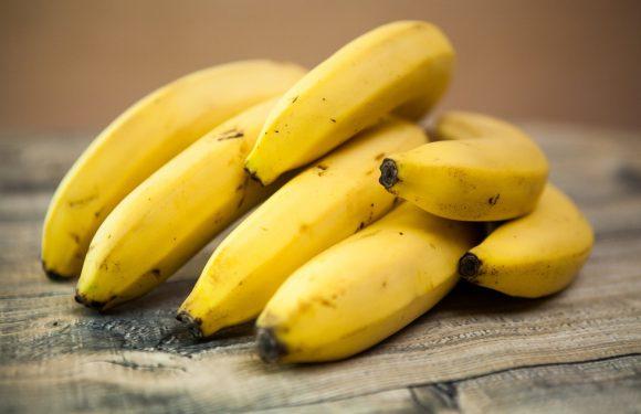 У відомому польському магазині в бананах знайшли 160 кг кокаїну