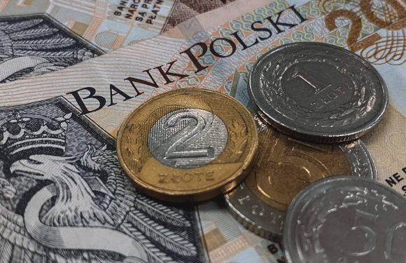 У селі в Польщі знайшли схованку з грошима з часів війни