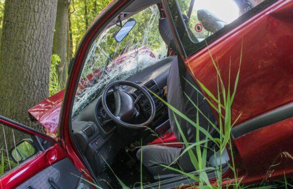 Українець у Польщі автівкою врізався в дерево, втік, а потім прийшов привітатись з поліцією
