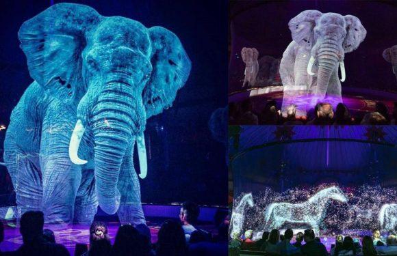 На вихідних до Вроцлава завітає незвичайний цирк з голограмами замість тварин