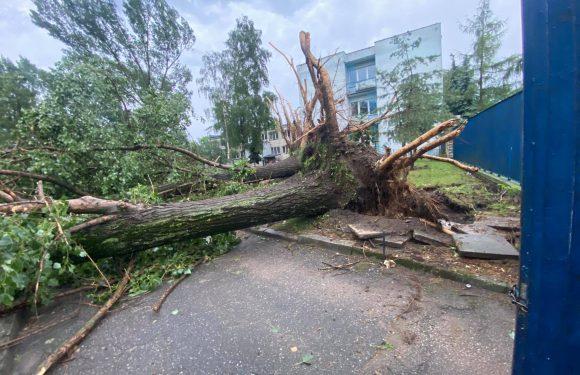 Через негоду в Польщі без електрики залишилось 56 тис. осіб