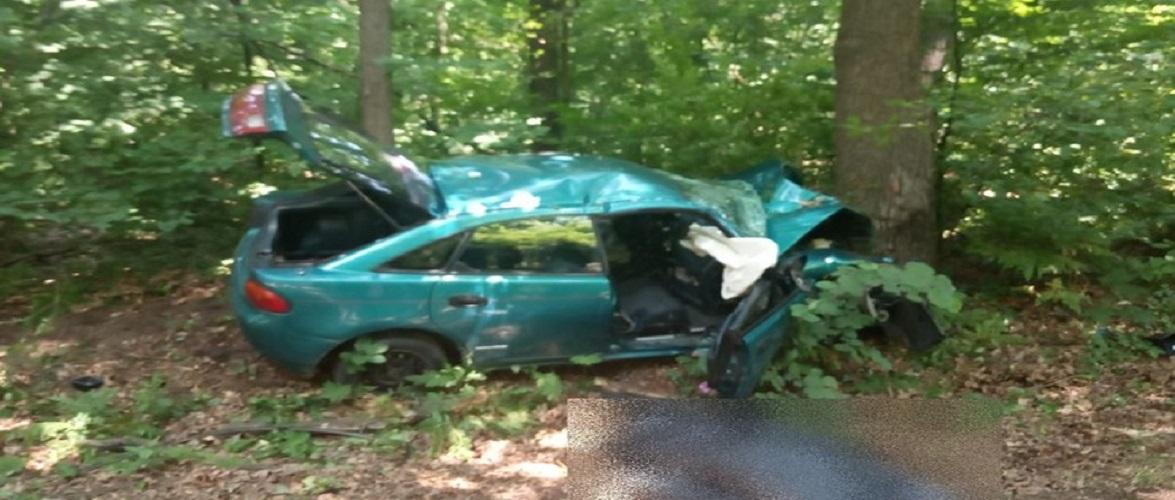 Молодий водій в Польщі так втікав від поліції, що врізався в дерево і загинув [+ФОТО]