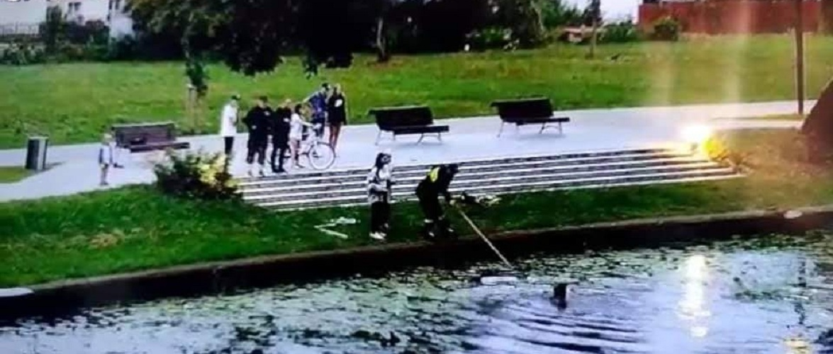 У Польщі жінка стрибнула до річки, щоб врятувати кошенят [+ВІДЕО]