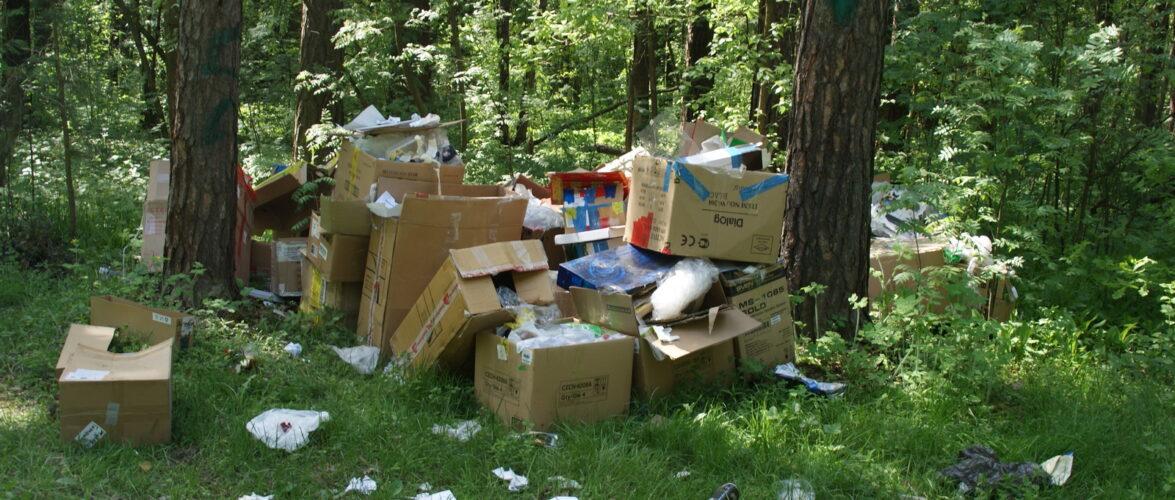 В Польщі піднімуть штрафи за забруднення лісів та середовища до 10 млн злотих