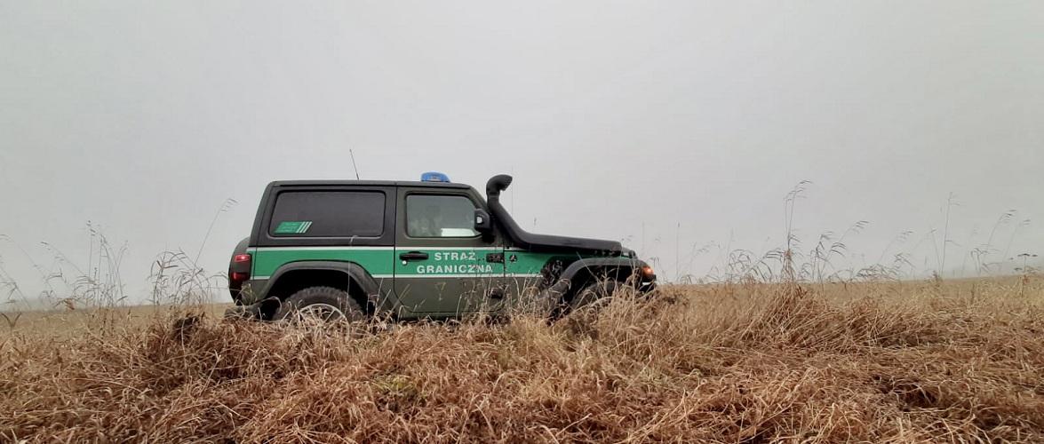 Двох українців затримали на кордоні Польщі за допомогу нелегалам