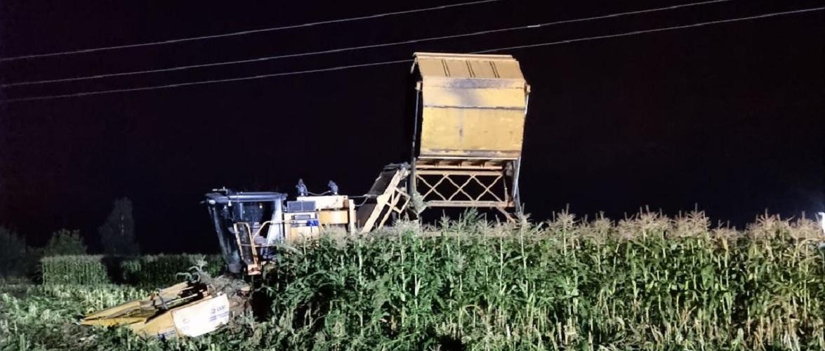 В Польщі фермера на-смерть вдарило струмом