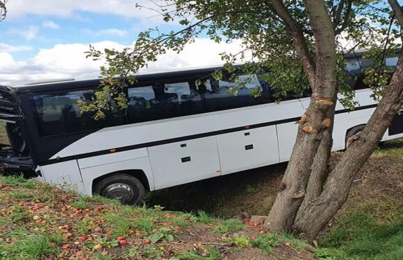 Чергова ДТП в Польщі: автобус з'їхав до рову, понад 30 дітей в лікарні [+ФОТО]