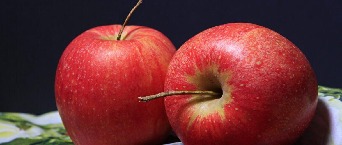 Українці не приїжджають на збір яблук до Польщі: фермери вимушені продавати фрукти за безцінь