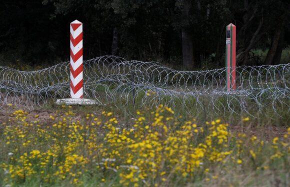 На польсько-білоруському кордоні знайшли тіла мертвих мігрантів
