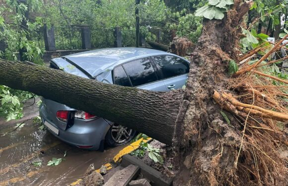 Обережно: в Польщі — сильний вітер, який може наробити біди