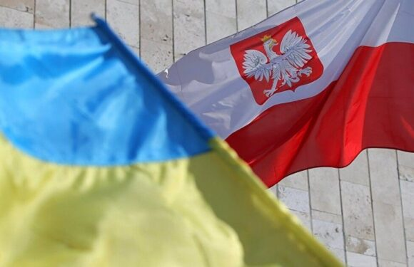 В польському місті Ополе організували спеціальні курси та навчання для українців