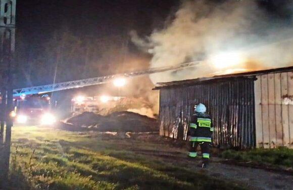 Троє українців в Польщі підпалили ферму та пограбували магазин
