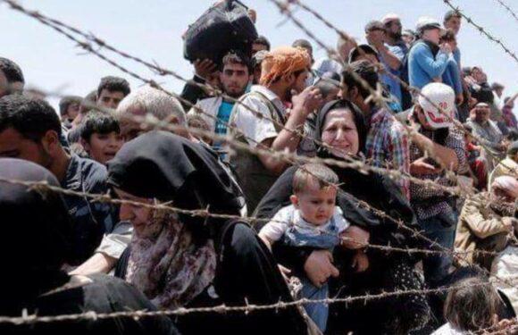 На польсько-німецькому кордоні затримали майже 400 нелегалів